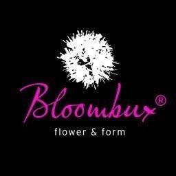 !!WELTNEUHEIT!! Bloombux® – flower & form by INKARHO® 25-30 cm breit im 2 Liter Pflanzcontainer