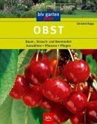Obst: Baum-, Strauch- und Beerenobst Auswählen · Pflanzen · Pflegen