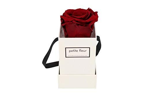 Petite Fleur Infinity Rosen Flowerbox XS weiß - quadratisch 6 x 6 x 15 cm - langanhaltende...