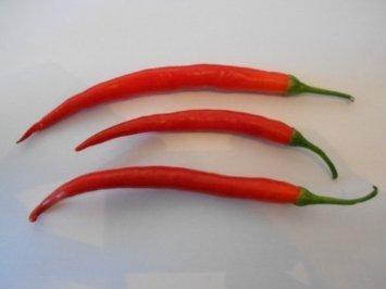 Cayenne Rot 30 Samen (Eine der bekanntesten Chili's der Welt)