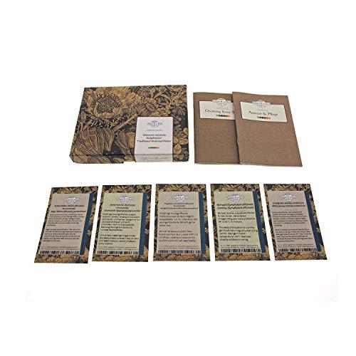 Bekannte nützliche Heilpflanzen - Samen-Geschenkset mit 5 traditionellen Arzneipflanzen für den...