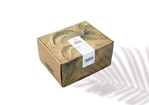 Bonsai Starter Kit für Anfänger I ALL-IN-ONE Plantbox I 24-teiliges Pflanz-Set inkl. Samen, Bambus...