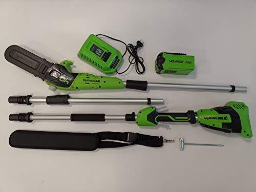 Greenworks Tools 40V Akku Hochentaster + 1x2Ah Akku + Ladegerät (1401107VA)