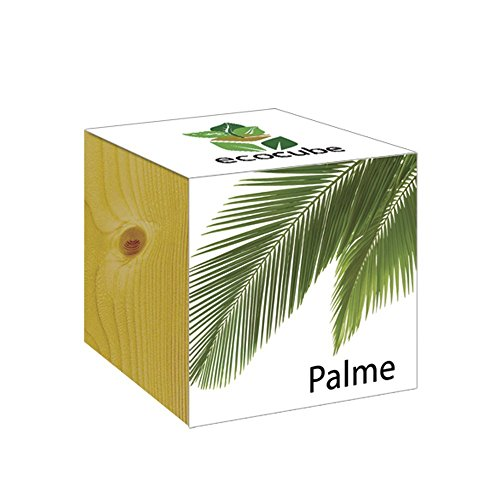 ecocube Holzwürfel - Palme