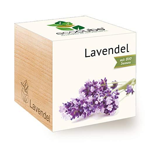 Feel Green Ecocube Lavendel, Bio Samen, Nachhaltige Geschenkidee (100% Eco Friendly), Grow Your...