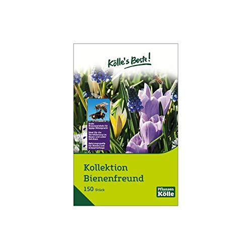 Kölle's Beste! Kollektion Bienenfreund im Jutesack, Blumenzwiebelmischung, 150 St.