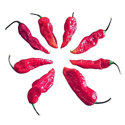 Bhut Jolokia Red 20 Samen (eine der extrem scharfen Chilis der Welt) mit Spitzenwerten von 1.000.000...