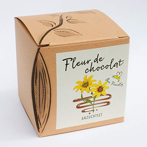 Naturkraftwerk Anzuchtset Fleur de Chocolat, Saatgut und Anzuchterde inklusive