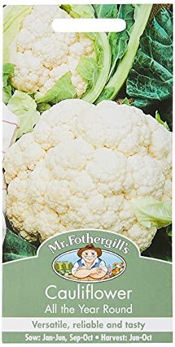 Mr. Fothergill's 14567 Blumenkohl ganzjährig, 200 Samen