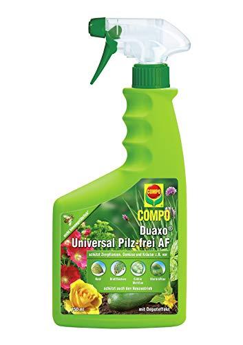 COMPO Duaxo Universal Pilz-frei AF, Bekämpfung von Pilzkrankheiten an Zierpflanzen, Gemüse und...