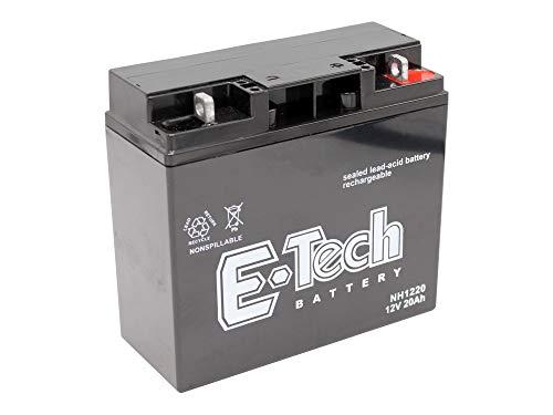 Gel Batterie 12Volt 20AH verstärkt Rasentraktor passend Castelgarden