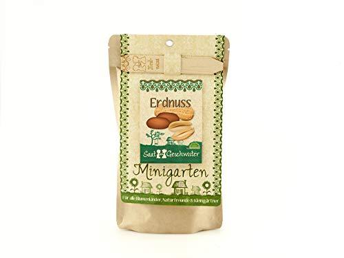 Die Stadtgärtner Minigarten Erdnuss | Komplettes Anzuchtset für leckere Erdnüsse | Gesiebte Erde,...
