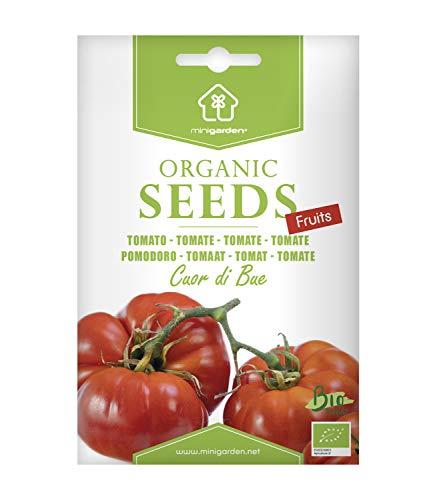 Ochsenherztomate, zertifizierte biologische Samen von Minigarden, enthält zwischen 125 und 150...