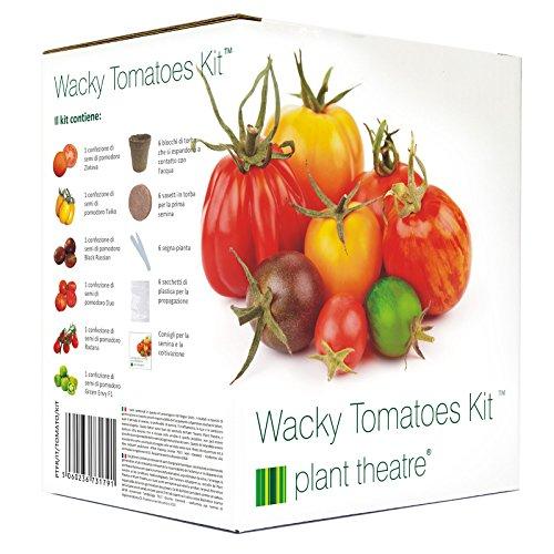 Plant Theatre Kit von extravaganten Tomaten mit verschiedenen Sorten zu wachsen