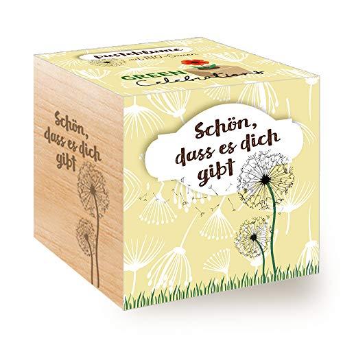 Feel Green Celebrations Ecocube, Pusteblume Samen, Bio Zertifiziert, Holzwürfel Mit Lasergravur...