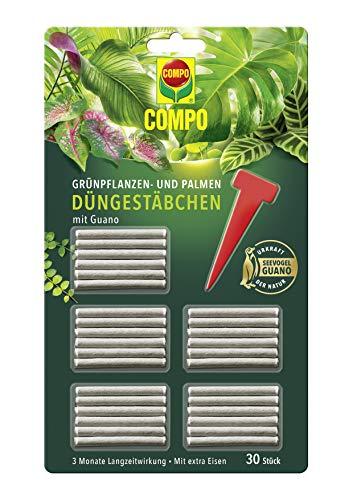 COMPO Grünpflanzen- und Palmen Düngestäbchen mit Guano, 3 Monate Langzeitwirkung, 30 Stück