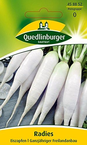 Quedlinburger Radies 'Eiszapfen', 1 Tüte Samen