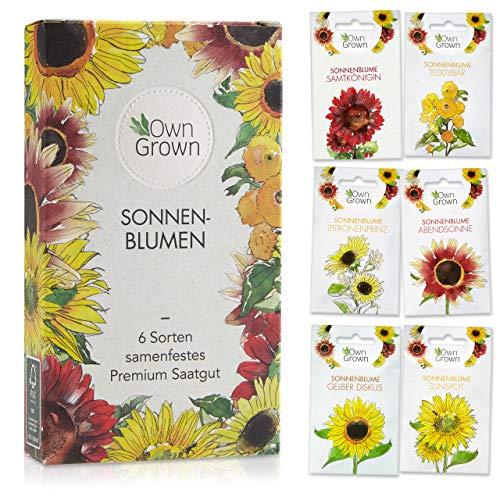 Sonnenblumen Samen Set: Premium Sonnenblumen Saatgut mit 6 Sorten schöner Sommerblumen Samen -...