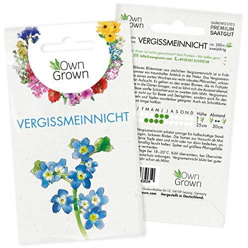 Vergissmeinnicht Samen: Premium Vergissmeinnicht Blumen Samen für ca. 200 blühende Vergiss Mein...