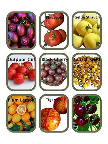 Tomaten Saatgut Set 9 x 10 Samen (Alte & Neue Robuste Sorten) *Zuckersüße Sorten,...