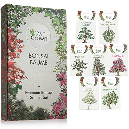 Bonsai Samen Set: Premium Bonsai Starter Kit mit 7 Sorten Bonsai Saatgut – Bonsai Anzuchtset zum...