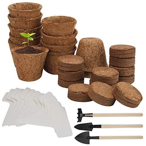 Herefun 39 Stück Anzucht Set, Anzucht-Töpfe, Pflanzenanzucht, Bonsai Starter Kit mit...