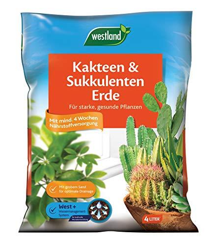 Westland Kakteen- und Sukkulentenerde, Blumenerde, 4 Liter, 733858