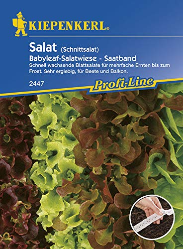 Kiepenkerl 2447 Schnittsalat Salatwiese (Saatband) (Schnittsalatsamen)