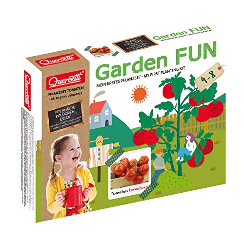beluga Spielwaren 0672D Garden FUN Tomate 0672D-Garden Pflanzset, Natur