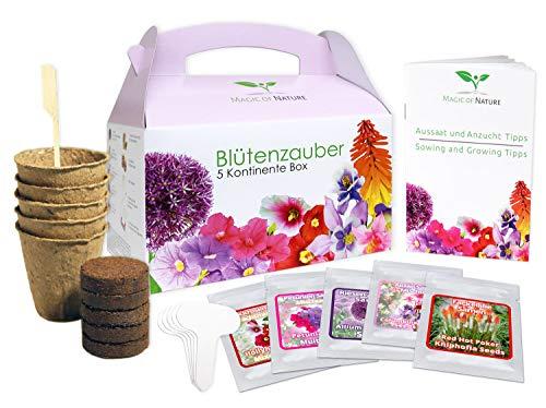 Geschenk Anzuchtset: Blütenzauber 5 Kontinente Box - zum Selberzüchten oder zum Verschenken - eine...