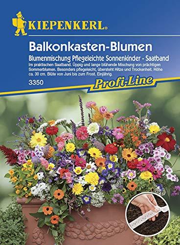 Balkonkasten - Blumenmischung Sonnenkinder (Saatband) von Kiepenkerl