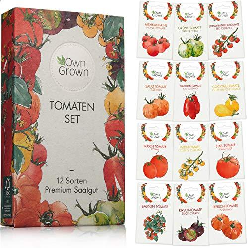 Tomaten Samen Set mit 12 Sorten Tomatensamen für Garten und Balkon: Premium Tomaten Anzuchtset –...