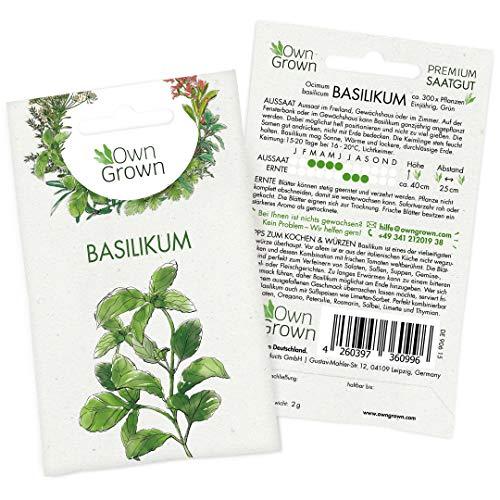 OwnGrown Premium Basilikumsamen (Ocimum basilicum), Basilikum Samen zum Pflanzen, Saatgut für rund...
