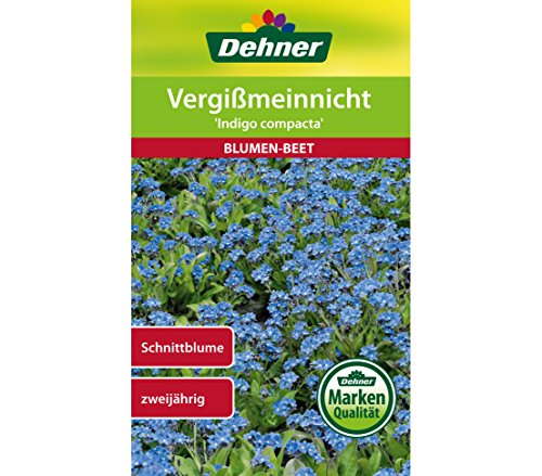 Dehner Blumen-Saatgut, Vergißmeinnicht 'Indigo compacta', 5er pack (5 x 0.7 g)