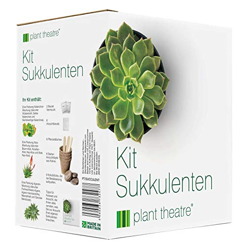 Plant Theatre Sukkulenten-Kit - Geschenk-Samen-Kit mit Supersukkulenten-Pflanzensorten für Anbau...