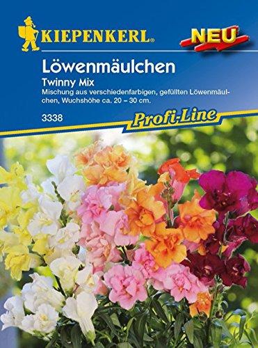 Kiepenkerl Antirrhinum majus (Löwenmäulchen Twinny Mix) 0-0cm / 1 Packung (Blumenzwiebeln,...