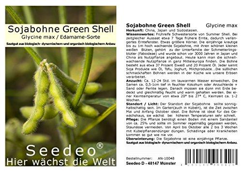 Seedeo® Sojabohne Green Shell (Glycine max) ca. 30 Samen BIO