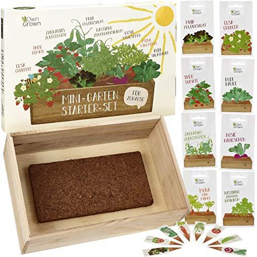 Saatgut Anzuchtset mit Holzkiste und 8 Sorten Pflanzen Samen: Kinder Anzuchtset Pflanzen mit Gemüse...