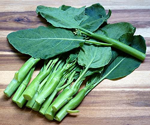 Kailan Kichi - Chinesische Brokkoli - Broccoli - 100 Samen