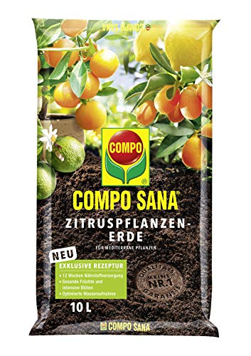Compo SANA Zitruspflanzenerde mit 12 Wochen Dünger für alle Zitruspflanzen und mediterranen...