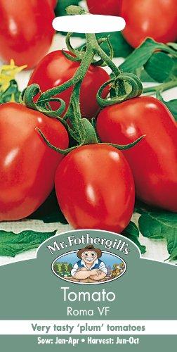 Tomato Roma VF by Mr Fothergills