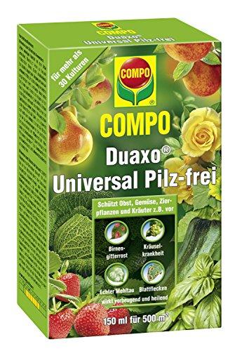 COMPO Duaxo Universal Pilz-frei - 150 ml