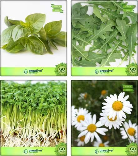 Pinkdose Herb Pflanzensamen Zitronenbasilikum, Wild Rakete, Cress Common, Deutsch Chamomille...