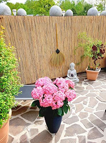Schilfrohrmatte 180x600 cm - Natur Wind und Sichtschutzmatte aus Schilfrohr für Haus,Garten und...