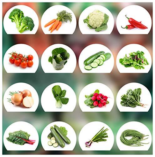 Prademir Gemüse Samen Set - 16 Gemüse Sorten aus Portugal   100% Natur Saat (Keine Chemie,...