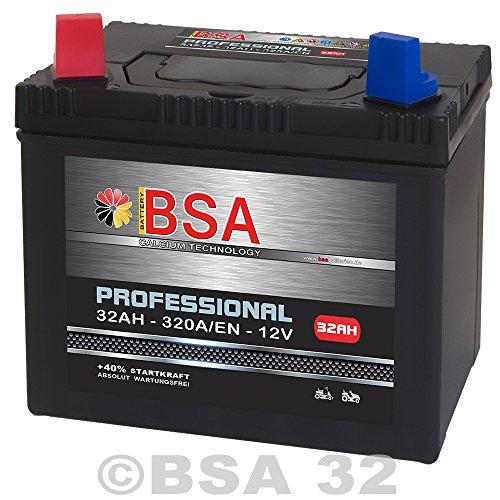 Rasentraktor Aufsitzmäher Batterie 32Ah 12V Starterbatterie absolut WARTUNGSFREI Plus Pol Links...