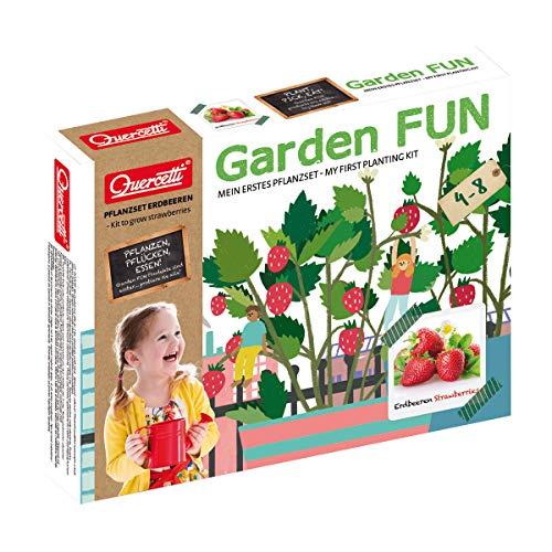 Beluga Spielwaren 0670D - Garden FUN Pflanzset Erdbeere