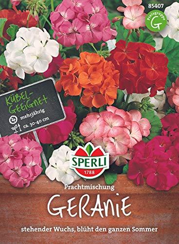 Sperli Blumensamen Geranie Prachtmischung, grün