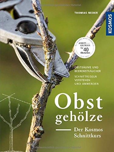 Obstgehölze - Der KOSMOS Schnittkurs: Obstbäume und Beerensträucher - Schnittregeln verstehen und...