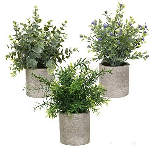 AXABING Künstlicher Pflanzen, künstliche Mini-Eukalyptuspflanzen 3 Stück, künstliche Pflanzen...